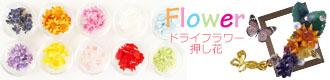 ドライフラワー・押し花