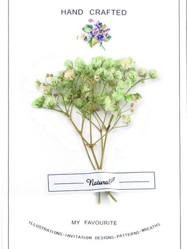 画像1: ドライフラワー【Bouquet-ブーケ-】010/ かすみ草 ライム (1)