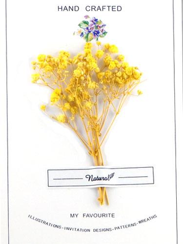 画像1: ドライフラワー【Bouquet-ブーケ-】06/かすみ草 イエロー (1)