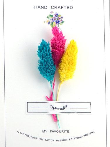 画像1: ドライフラワー【Bouquet-ブーケ-】02/ポアプランツ シグナル (1)